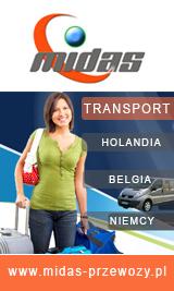 busy - Holandia